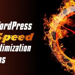 WP Speed Optimization Service (Care) For Small Site